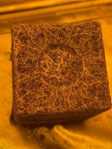 dtek horticulture cutting edge rooting gel wholesale