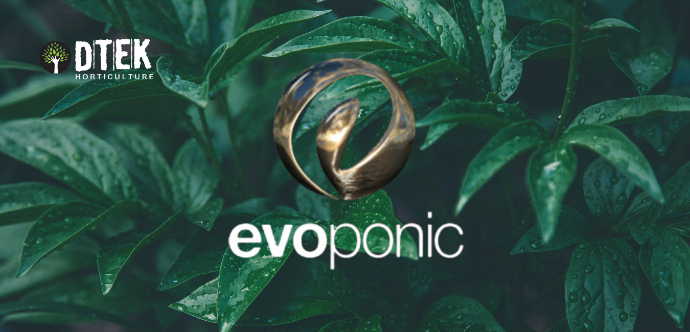 dtek horticulture hydroponics gardening supplies wholesalers London Kent Uk Essex brands available for wholesaler lighting LED hydro evoponic plant care light and accessories
